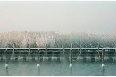 """derThomas - """"Chiemsee im Winter (4)"""""""