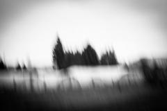 """johannes - """"april blur III"""""""