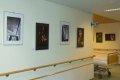 """Torsten - """"Ausstellung Naumburg 3"""""""