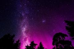 "Steffen - ""Nocturnal Sky"""